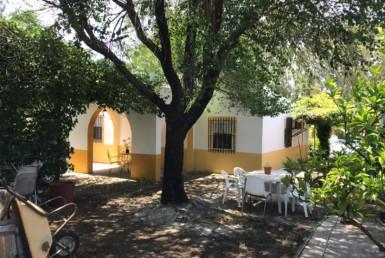 Parcela en Sevilla: El Palomar - Paradas (AR42).