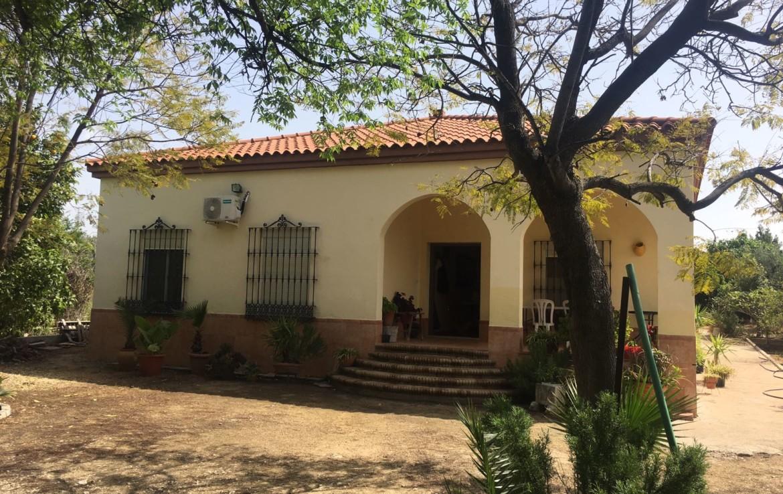 Arahal - urb. Pago redondo: Venta de parcela en Sevilla (AR125).