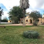 Venta de parcela en Sevilla: Urb. Pradollano – Carmona
