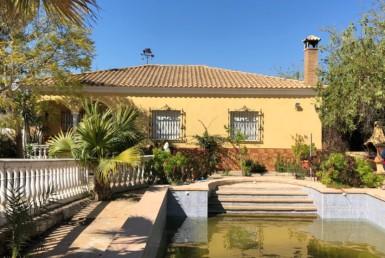 Parcela en Sevilla: Santa Elo - Arahal (AR99).