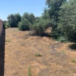 Venta de Terreno en Sevilla: Urb. El Pilar- Carmona