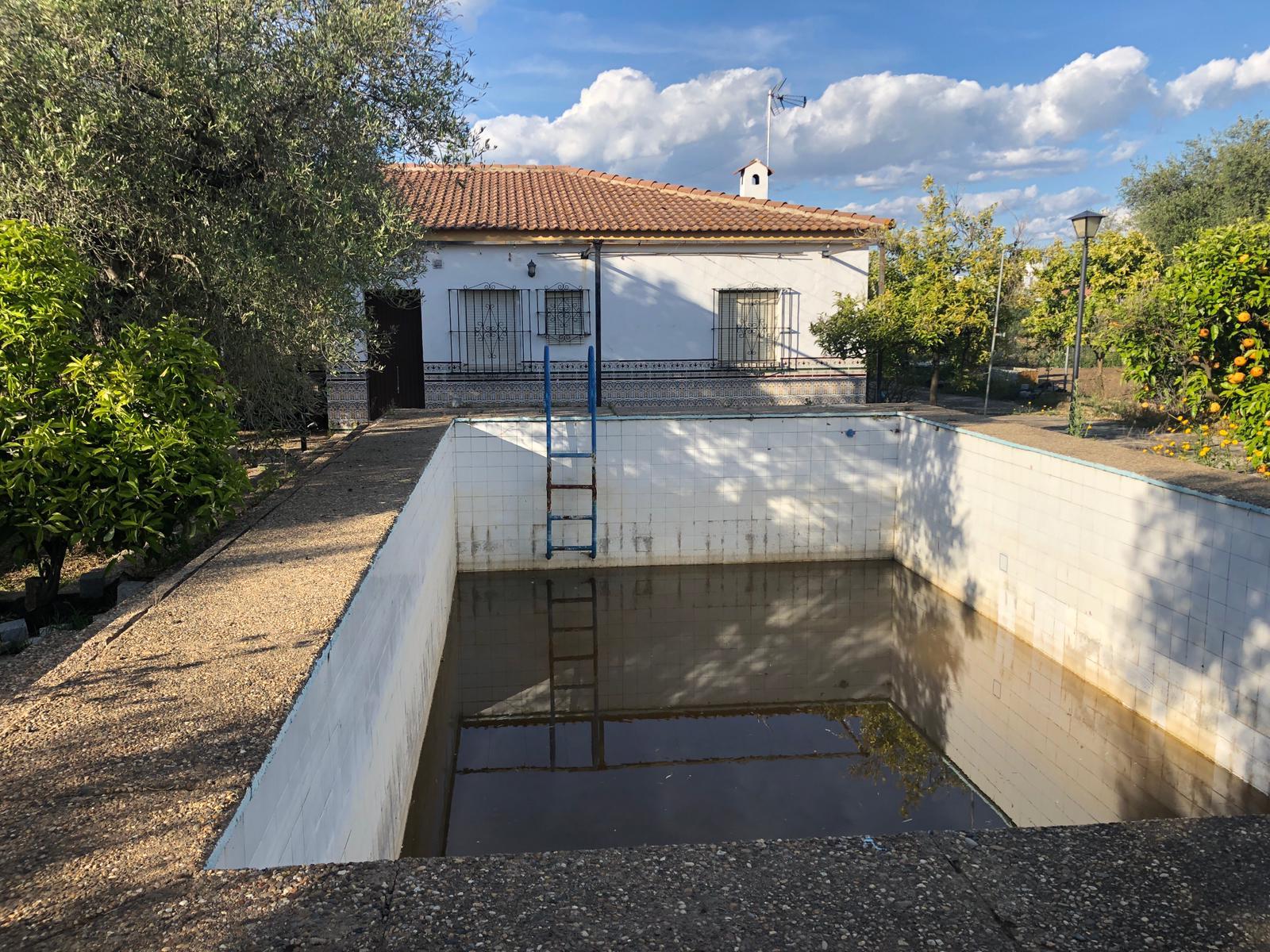 Parcela en Sevilla: Los Ranchos - Sanlucar (AL96).