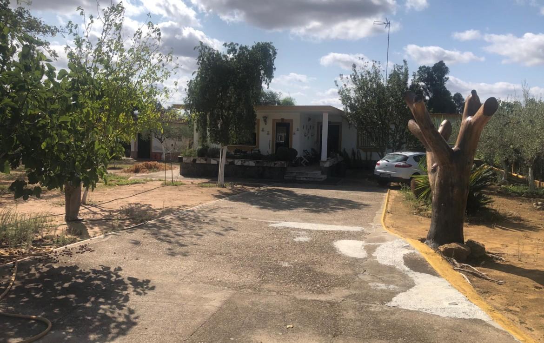 Venta De Parcela en Sevilla : Urb. Los Ranchos - Sanlúcar La Mayor