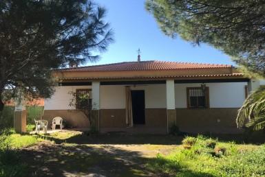Parcela en Sevilla: Casacerros - Utrera (UR1050).