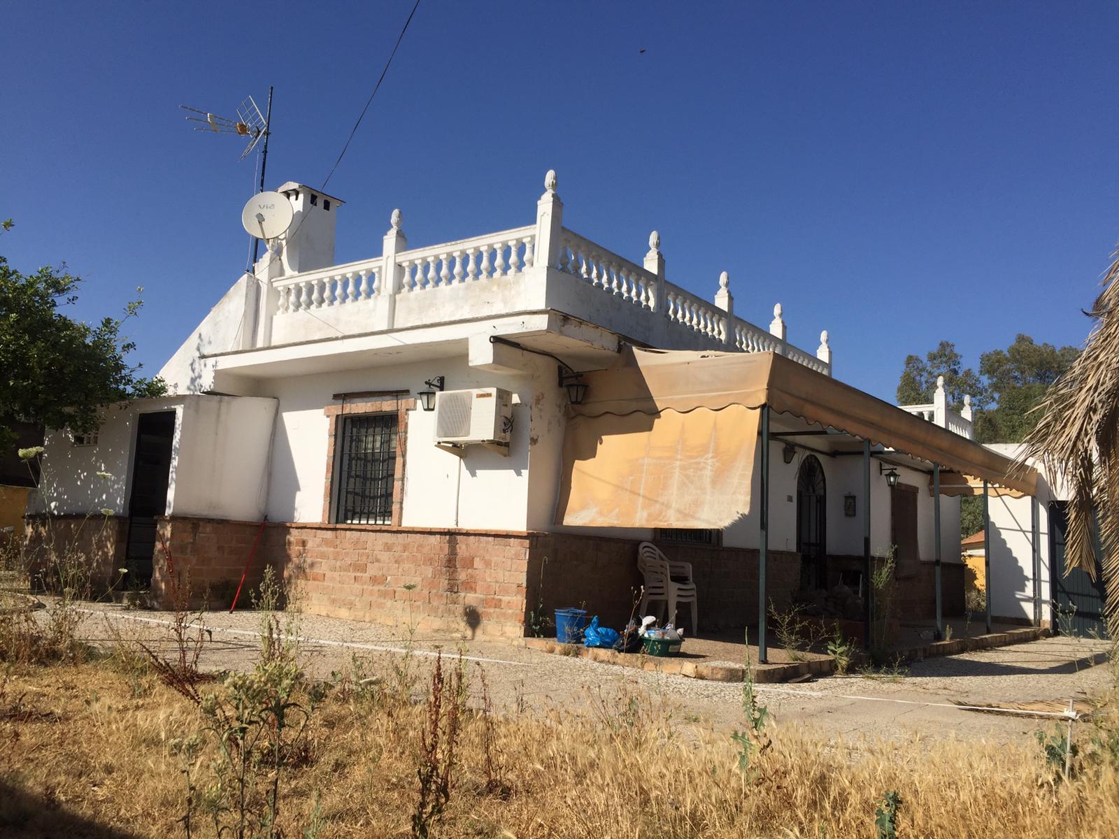 Parcela en Pino grande - Carmona (NIV170).