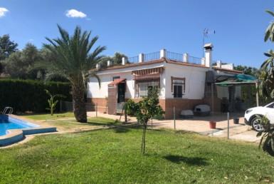 Parcela en Los Ranchos - Sánlucar (AL875).