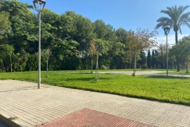 Parcela en Sevilla: La Ruana alta - Alcala de guadaira (AR135).