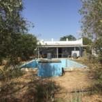 Parcela en Las Monjas - Carmona (NIV79).