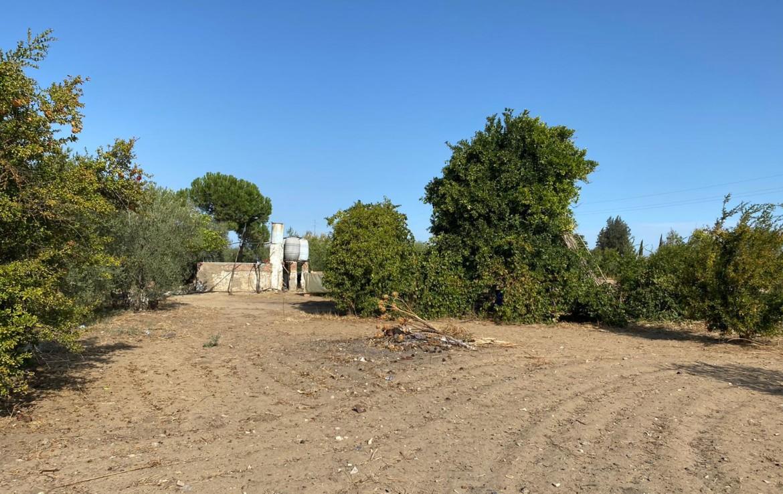 Venta de Parcela en Sevilla: Urbanización Los Abrigosos -Marchena.
