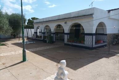 VENTA DE PARCELA EN SEVILLA: CORTIJO DE LA ALBAHACA- CARMONA