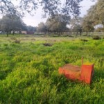 VENTA DE TERRENO EN SEVILLA: SIERRA NORTE – CASTILBLANCO