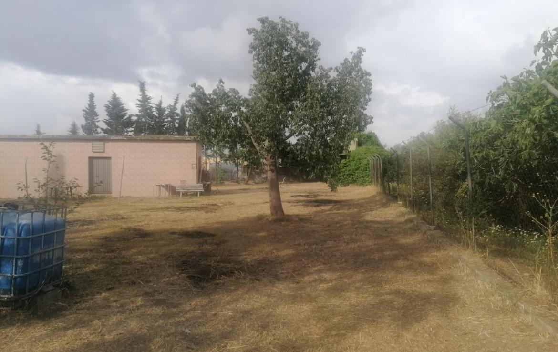Venta de parcela en Sevilla: Urb. Las Palmas – Carmona