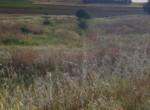 Venta de terreno en Sevilla: Urb. Monterrio – Sanlucar La Mayor