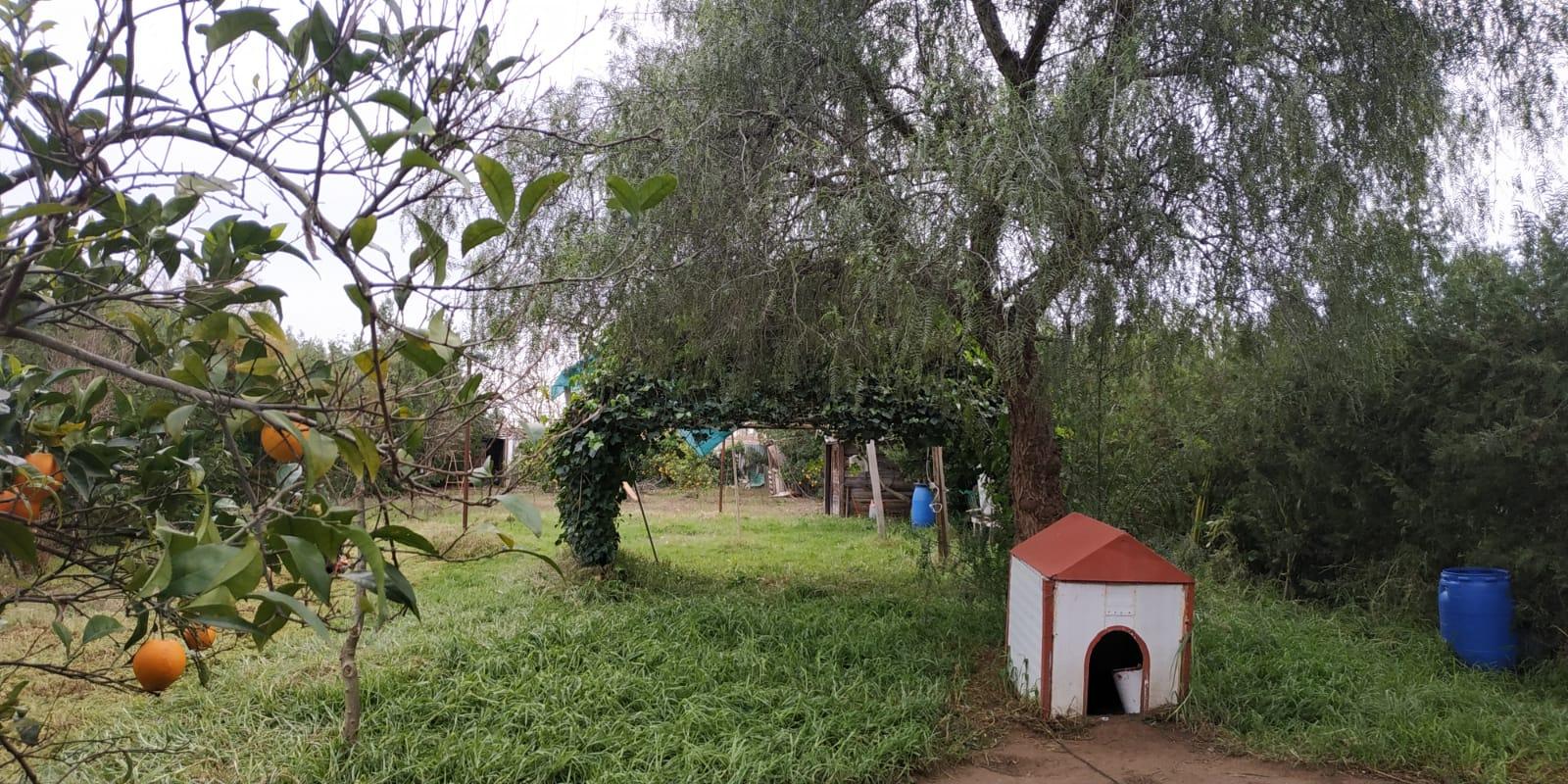 Parcela en venta en La Indiana en Los Palacios (UR15).