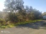 Venta de terreno en Sevilla: Urb. Campoamor – Castilblanco de los arroyos