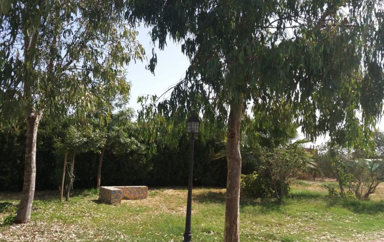 Venta de parcela en Sevilla: Los Ranchos - Sanlúcar la Mayor (AL55).