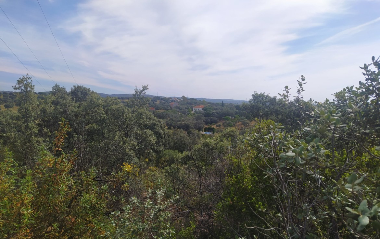 VENTA DE PARCELA EN SEVILLA: URB. CAMPOAMOR – CASTILBLANCO