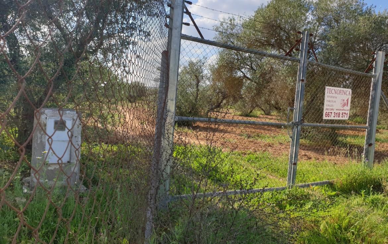 Venta de Parcela en Sevilla: Urb. Seismalos- Almensilla