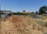 Venta de parcela en Sevilla: Urb. Los Naranjos - Carmona