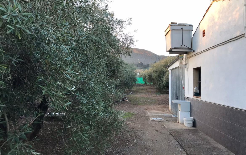Venta De Parcela en Granada : Albolote