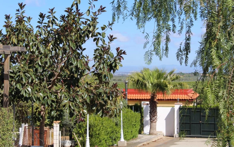 Parcela en Sevilla: Los Naranjos - Carmona (NIV59).