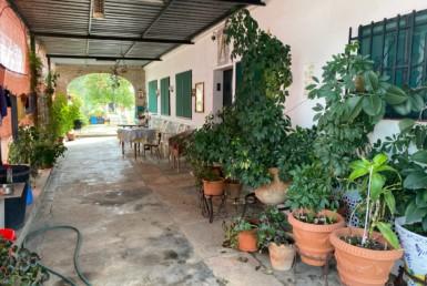 VENTA DE PARCELA EN SEVILLA: CAMINO DE LOS MOLARES – UTRERA