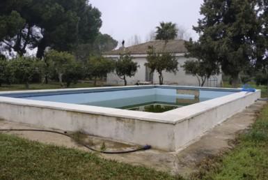 Venta de parcela en Sevilla: El Galgo Negro- Utrera
