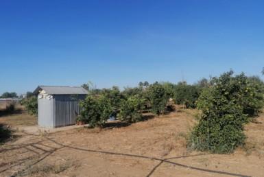 Venta de parcela en Sevilla: Urb. Los Naranjos – Carmona