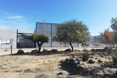 VENTA DE SOLARES EN SEVILLA: POLIGONO INDUSTRIAL CRUZ ALTA- CASTILBLANCO DE LOS ARROYOS.