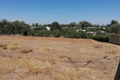 Venta de terreno en Sevilla: Urb. Frutales del alcor – Carmona
