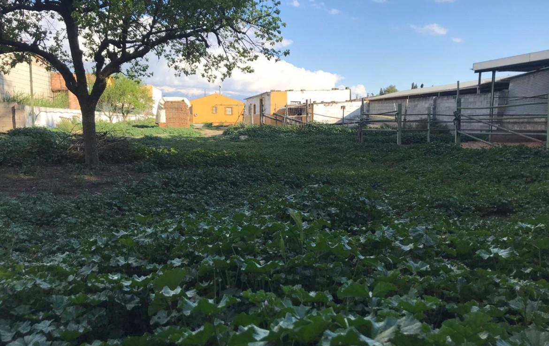 Venta de Parcela en Granada: Maracena- Granada