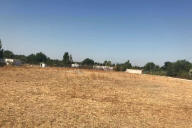 Terreno en venta en Llano verde en Arahal.