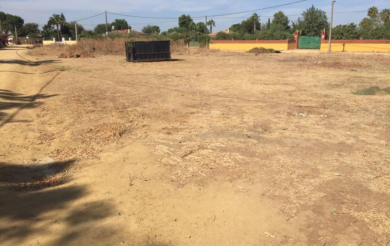 Venta de parcela en Sevilla: Pradollano - Carmona (NIV35)