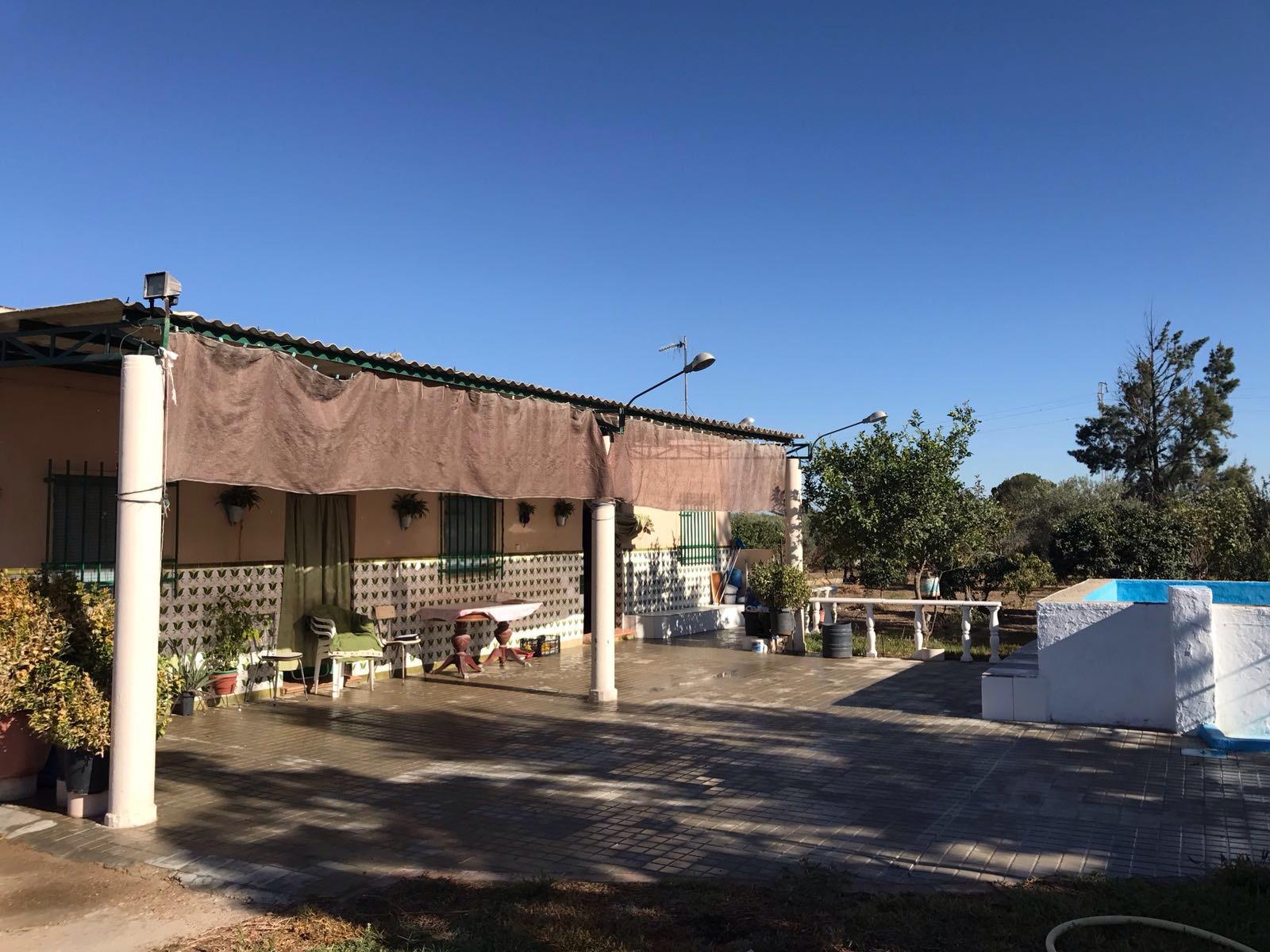 Parcela en venta en Camino de los Molares en Utrera (UR595).